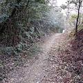 Photos: saigoku17-68