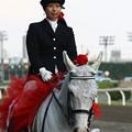 写真: 川崎競馬の誘導馬05月開催 カーネーションVer-120516-03-large