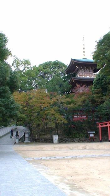 須磨寺 (2)