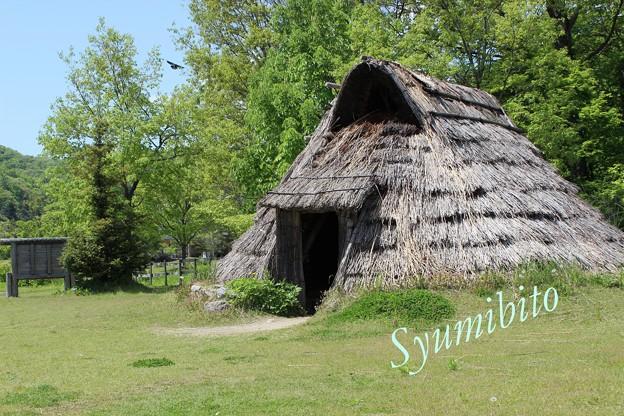 写真: 竪穴式住居(復元)