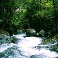 Photos: 白倉峡(白倉川の滝)a