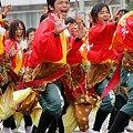 写真: 東京農業大学よさこいソーラン同好会 百笑_09 - 第10回 東京よさこい