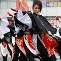 写真: 北斗☆踊り子本舗_07 - 第10回 東京よさこい
