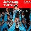 よさこい塾☆よっしゃ - 第8回 ドリーム夜さ来い 2009