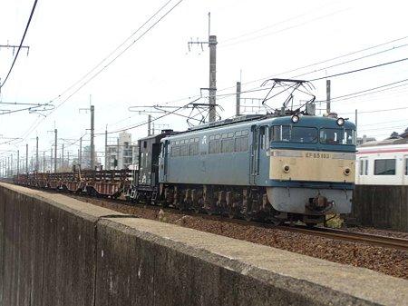 DSCN9941