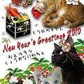 写真: New Year's Greeings 2010