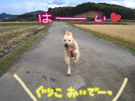 PIC00014