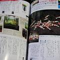 Photos: 2011 01/23 003