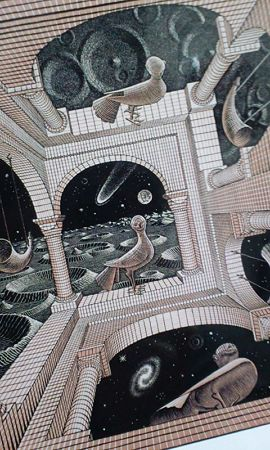 鳥の顔怖い。@迷宮への招待 エッシャー展