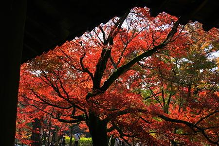 東福寺 「屏風に描かれた絵のように」