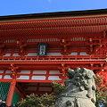 写真: 清水寺 仁王門と狛犬