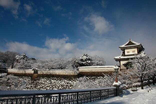 石川門 桜の木に雪の花が!(2)