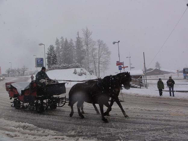 グリンデルヴァルト 馬車