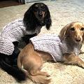 手編みのワンピとセーター