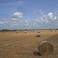 Photos: 2009.7.28~8.2フランス・ノルマンディーの田舎の風景