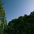 Photos: お遊び
