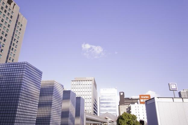 Photos: 2010-01-05の空
