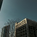 Photos: 2010-02-24の空
