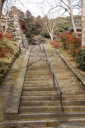 奈良菩提山 正暦寺