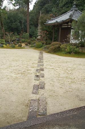 奈良 円照寺DSC_0911