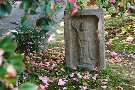 2010年04月04日伝香寺散り椿