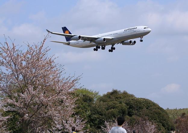 Photos: Narita International Airport Deutsche Lufthansa LH711