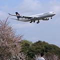 Narita International Airport Deutsche Lufthansa LH711