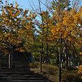 Photos: 20091120_091401
