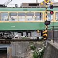 写真: 20100319_104912