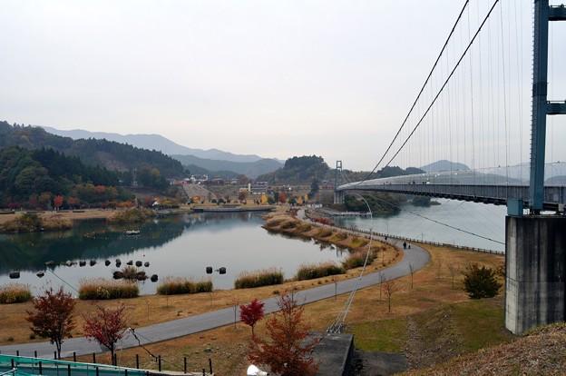 写真: 20101114_135412