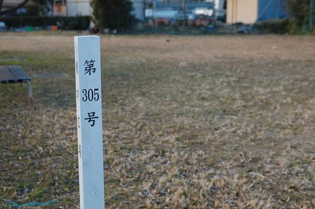 写真: 20110116_143432
