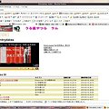 写真: entrydata-apache-f8_20100219