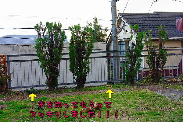 s-myu2009_1214(035)