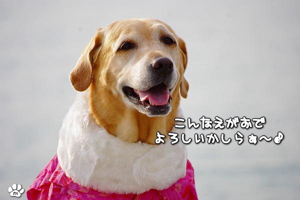 s-myu2009_1230_4
