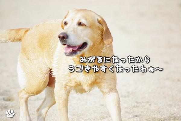 s-myu2009_1230_16