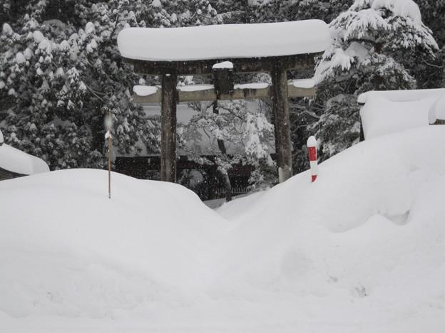 2011冬の旅 013