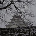 写真: 歴史を誇る名城