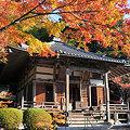 Photos: 西国番外 兵庫県 花山院菩提寺