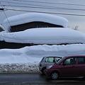 Photos: これでも雪は少なくなりました・・・