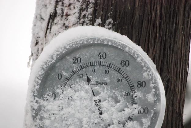 写真: 22 degree Fahrenheit