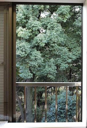 100123窓の外には森