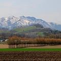 在る農村の風景