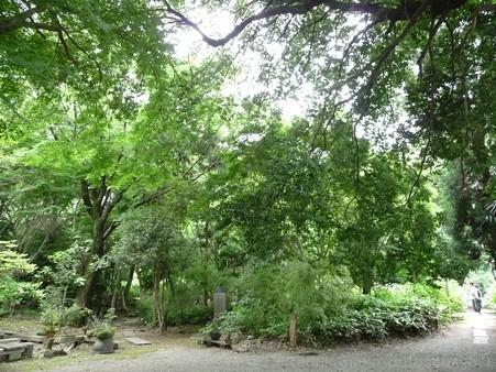 120627-白鳳庵 (87)