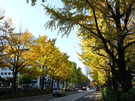 091123-山下公園通 (63)