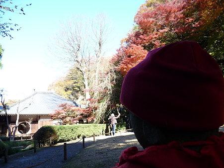 091204-明月院庭園 (78)