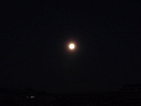 091231-お月さん (1)