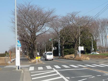 100120-海軍道路・上瀬谷ベース (10)