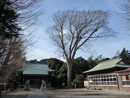 100120-日枝社 (1)