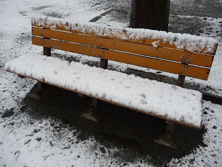 100202-雪(朝) (12)