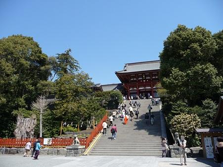 110406-八幡さま (29)